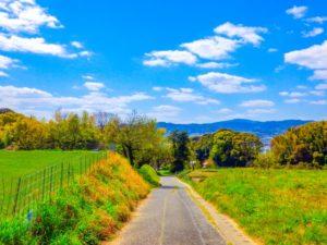青空と美しい道