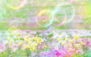 花とシャボン玉